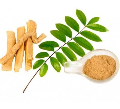 Экстракт эврикомы длиннолистной (Тонгкат Али) 100:1 (1 г) / Eurycoma Longifolia