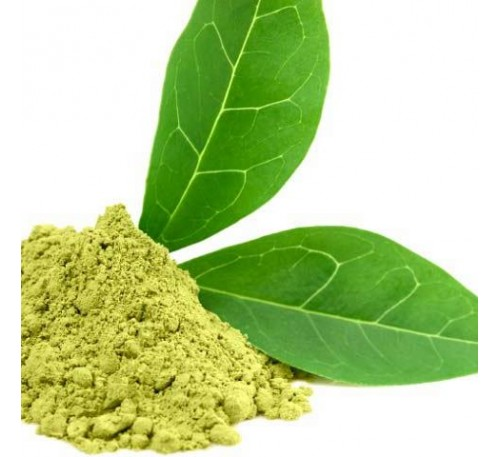 Экстракт зеленого чая (1 г) / Camellia Sinensis