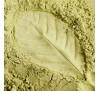 Кратом Рогатый Зеленый (2 г) / Mitragyna Speciosa